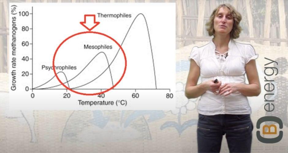 Katrin Pütz in the (B)energy biogas training online